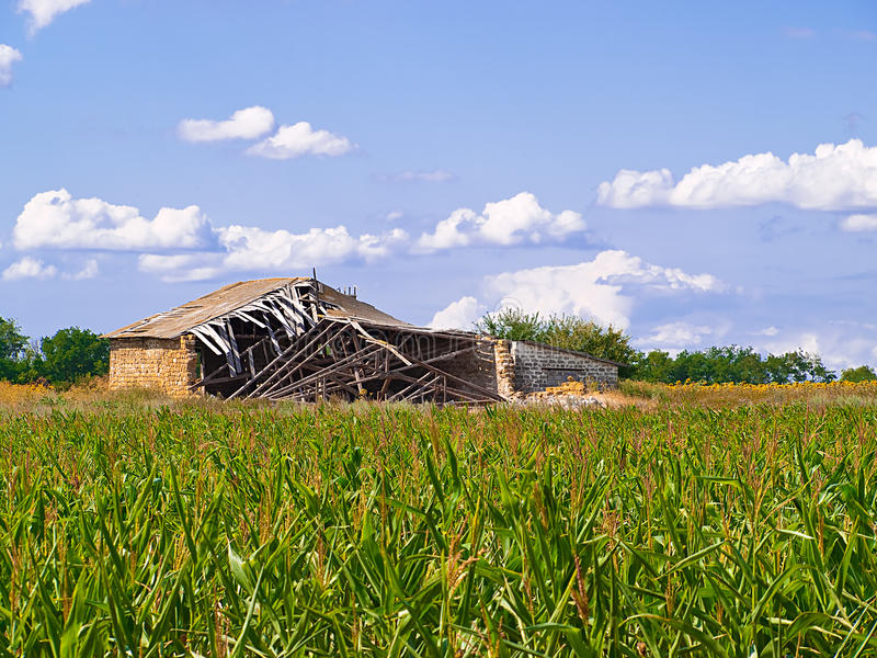 Download Old barn in the middle stock photo. Image of grass, abstract - 10568792