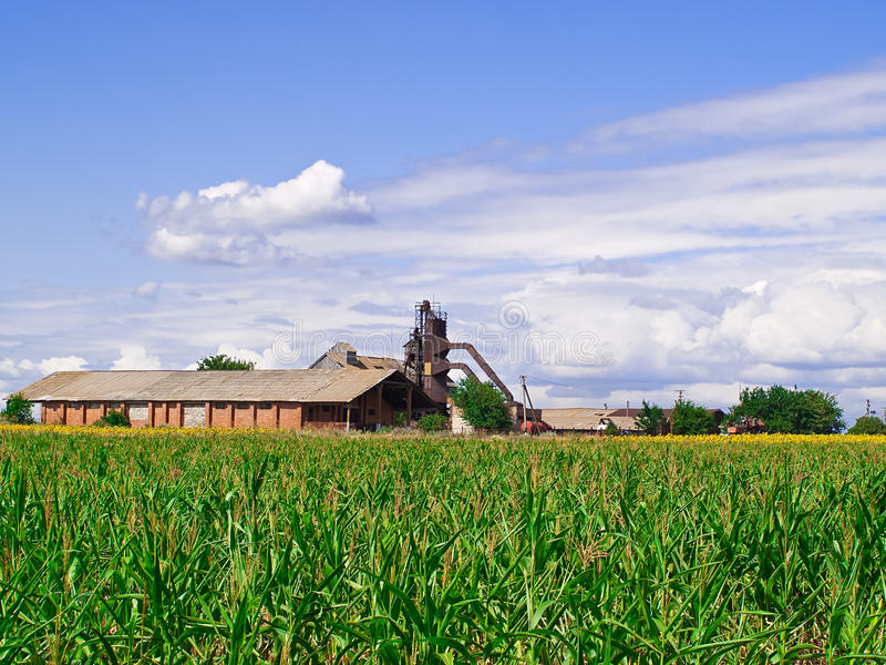 Download Old Barn In The Middle Of A Green Field Stock Photo - Image of illusion, farm: 10568848