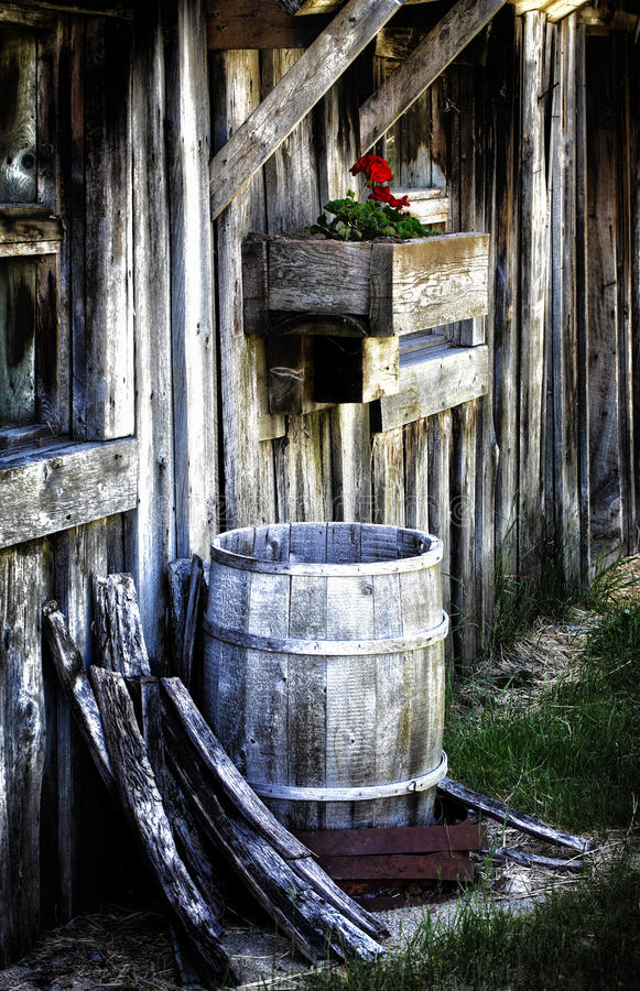 Old Barn with Rain Barrel and Geranium. An old barn with a rain barrel and flower box with a geranium stock photo