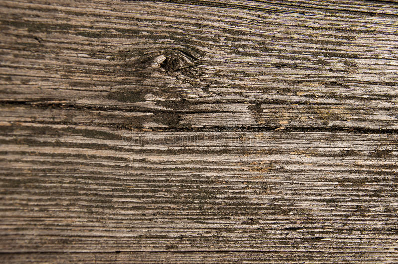 Old Barn Wood Floor Background Texture Stock Photo Image