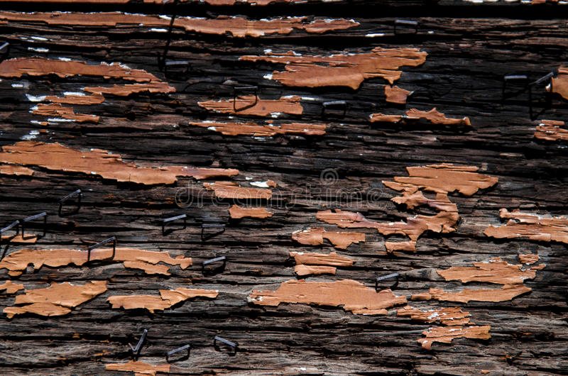 Old barn wood Floor texture background royalty free stock photography