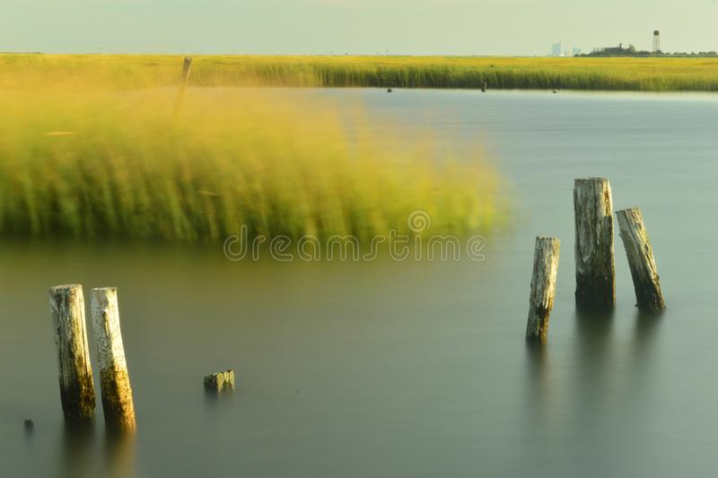 Bay marshes stock photography
