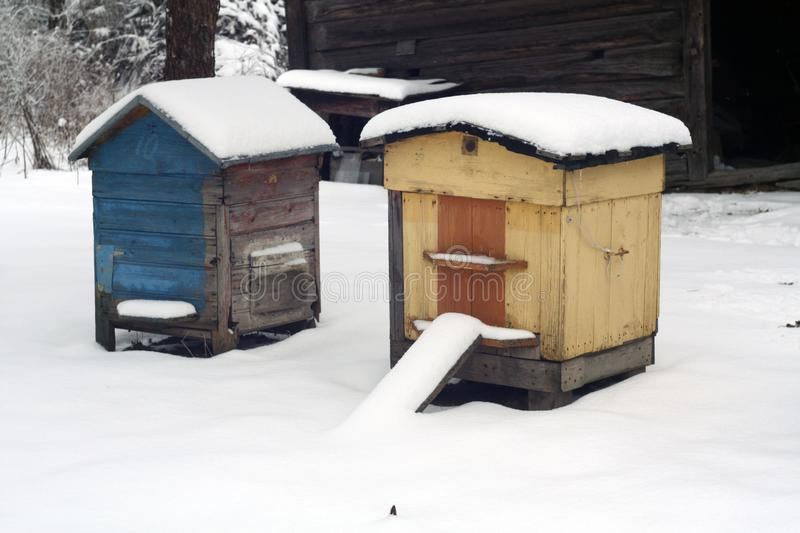 Old bee hives in winter. royalty free stock image