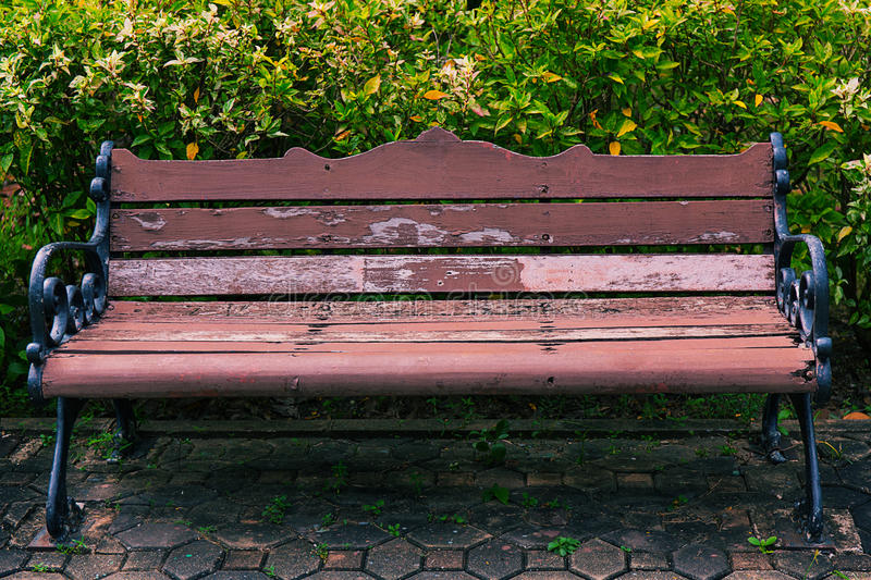Old bench is in park stock photo