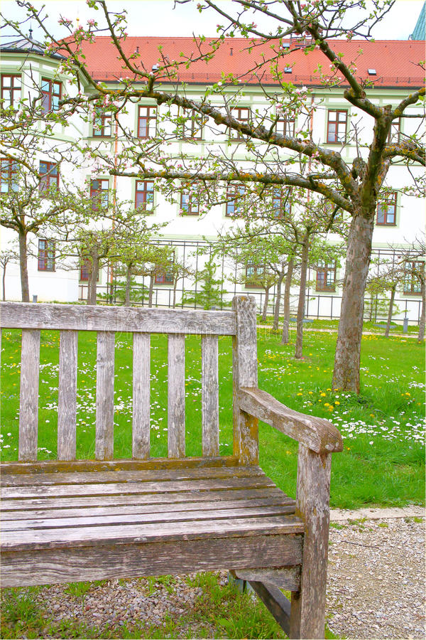 Old bench in the spring garden. royalty free stock photo