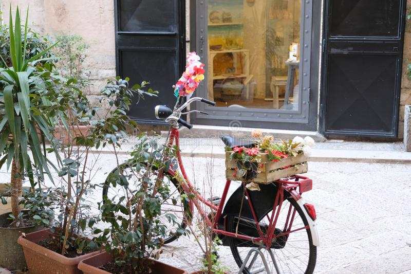 Old bicycle with a box of flowers royalty free stock photography