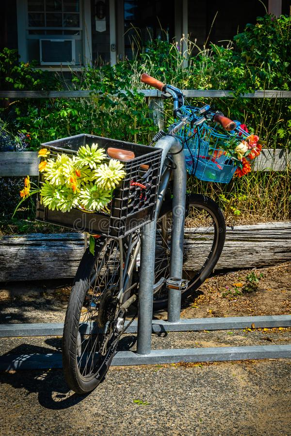 Old bicycle with flowers in Provincetown Massachusetts USA August 2017 at the end of Cape Cod Provincetown has a large gay populat. Ion of residents and tourists stock photo