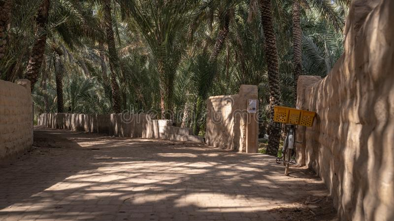 Old bicycle in a shaded alley in Al Ain Oasis, United Arab Emirates. Old bicycle in a shaded alley in Al Ain Oasis with patterns of palm trees leaf shade, United royalty free stock photos