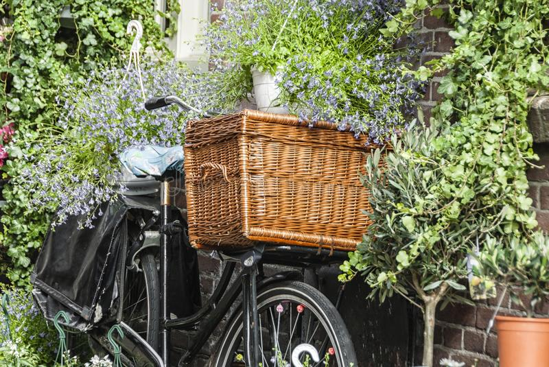 Old bike with a wooden bicycle basket stock image