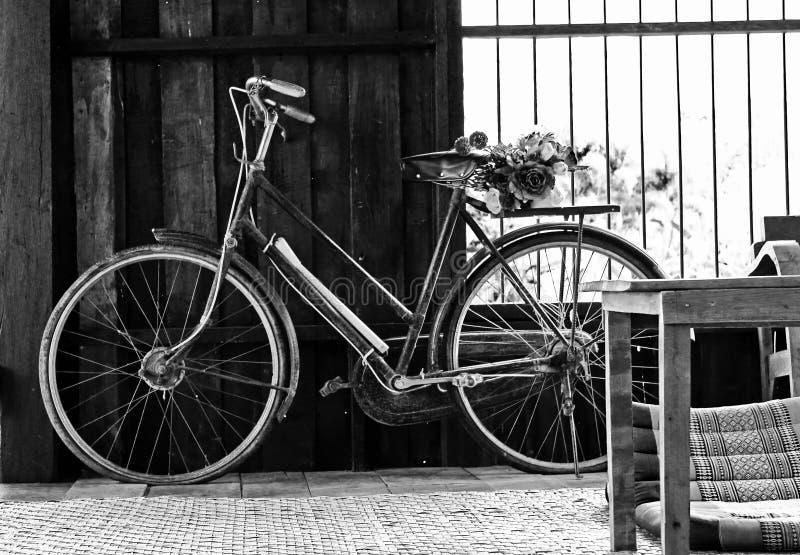 Old Biking royalty free stock photos