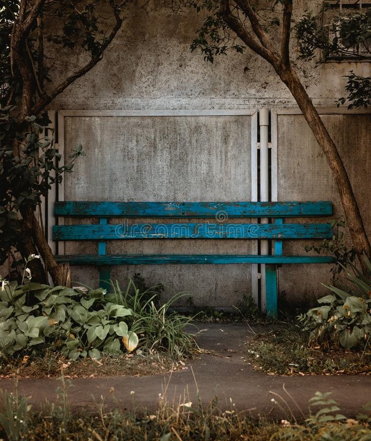 Old blue wooden bench on concrete wall framed with trees stock image