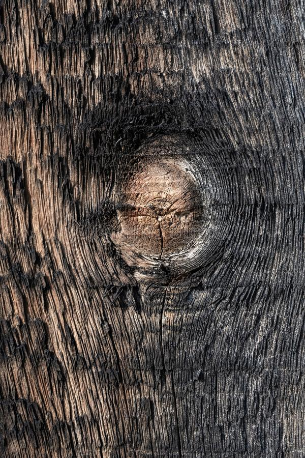 Old board with a knot stock image