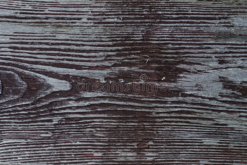 Old board with peeling paint royalty free stock images