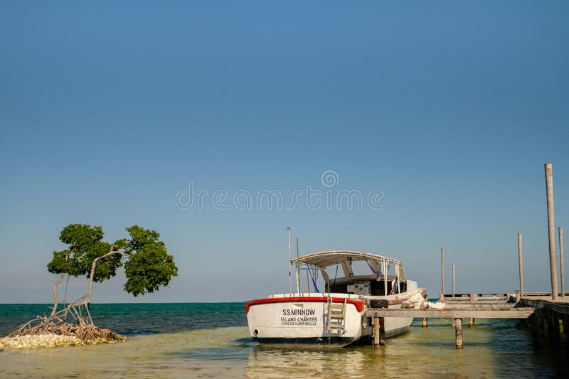 An old boat docked to a pier next to a mangrove tree stock photo