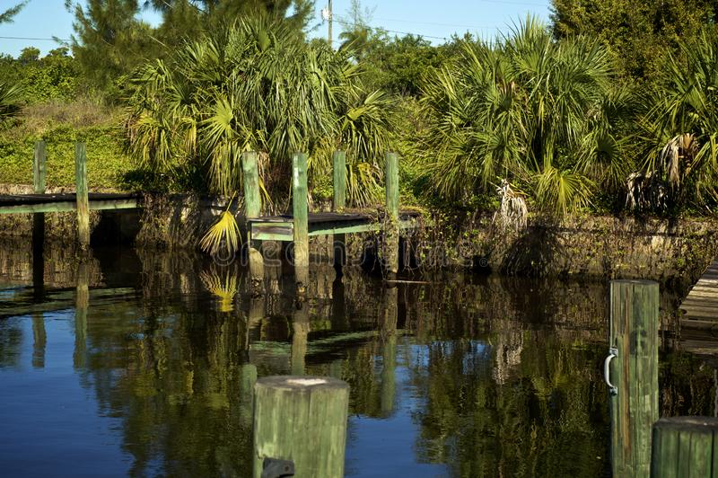 Old boat docks with palm trees. Old boat docks with over grown vegetation and palm trees in southwest florida royalty free stock photo