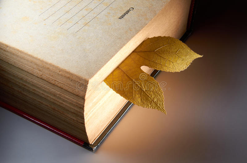 Old Book. With dry leaf as marker stock photography