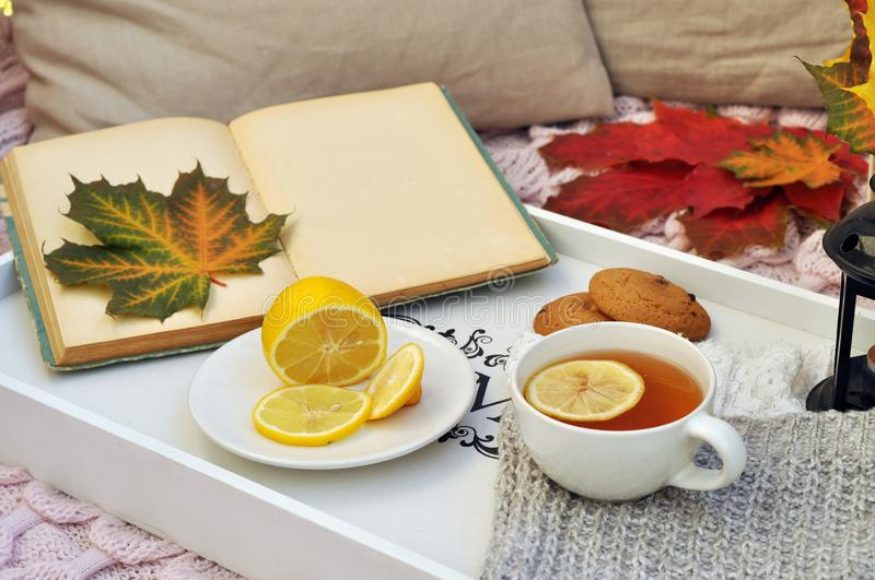 Old book with autumn leaves and tea stock image