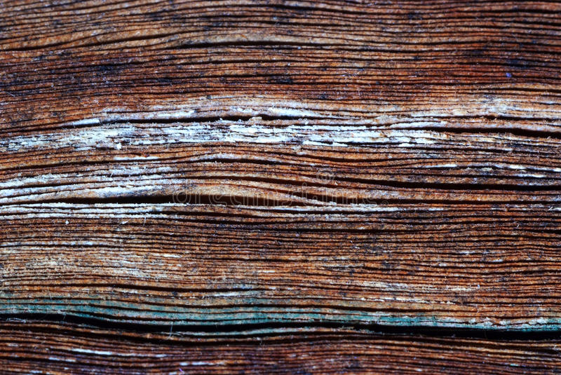 Download Old book texture stock image. Image of book, paper, list - 28502691
