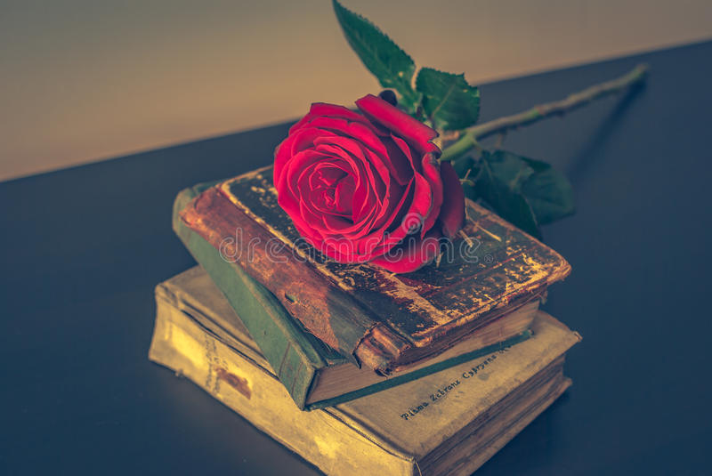Old books and rose. On the table royalty free stock image