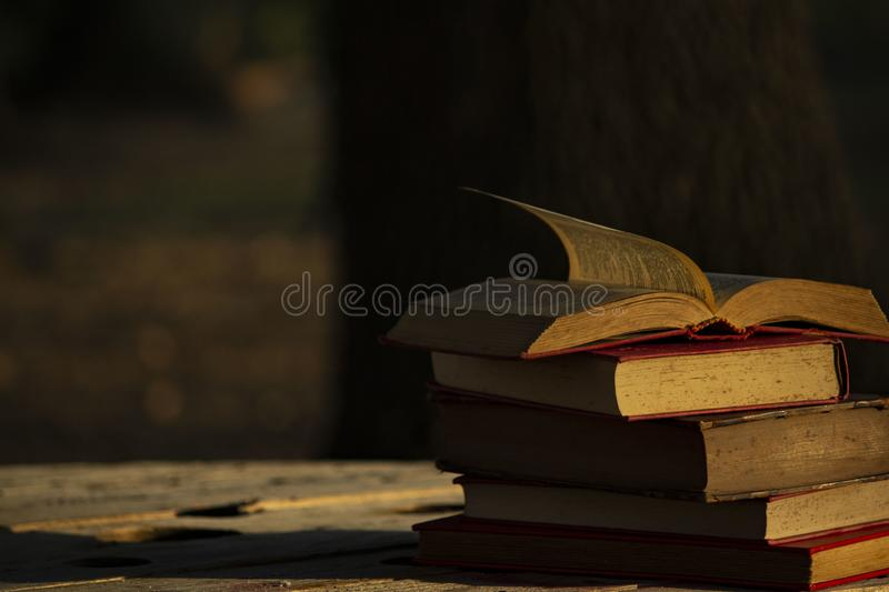 Old books on the table. Reading, studing, background, study, nopeople, education, vintage, style, symbol, wood, pages, sunset stock photography