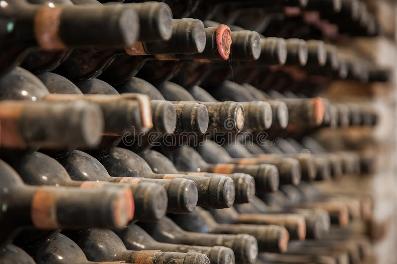 Old bottles of wine in old cellar stock photo