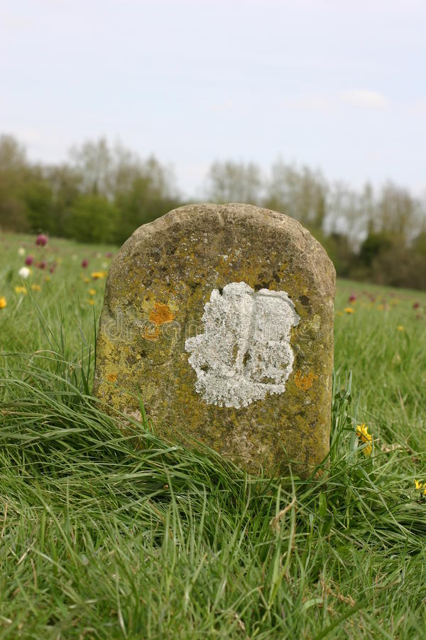 Old boundary marker in meadow. Old boundary marker covered with lichen in meadow with grass and flowers in the background stock photos