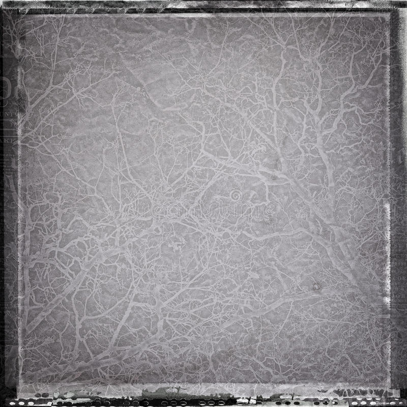 Old branches frame texture royalty free stock photography