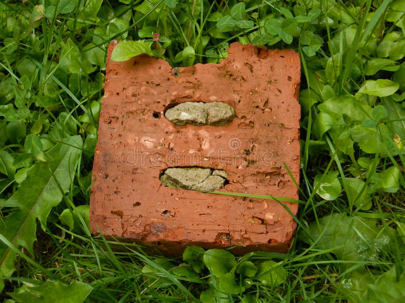 Old brick in the green grass royalty free stock photography