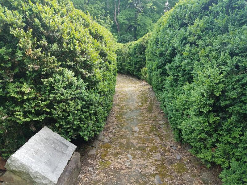 Old brick path or trail in the garden with green bushes and stone inscription stock photo