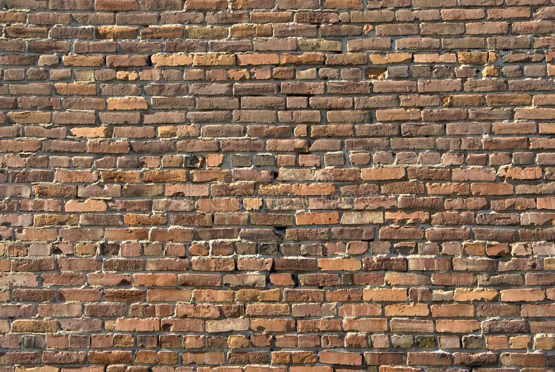 Old Brick Wall royalty free stock images