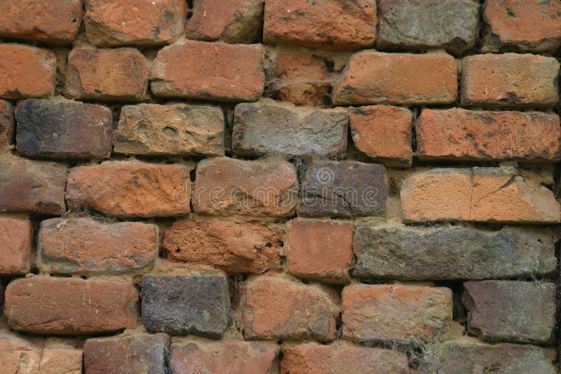 Download Old brick wall stock image. Image of brickwall, cemented - 523859