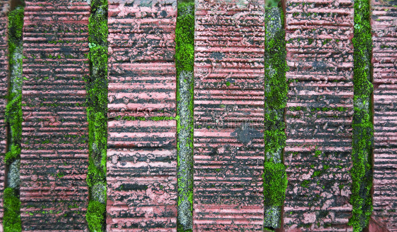 Old bricks with green moss stock photo