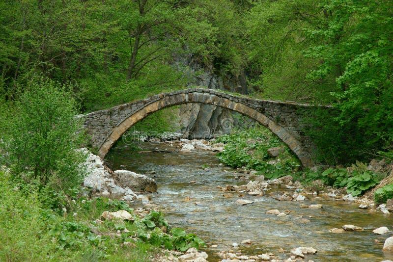 Download Old bridge stock photo. Image of green, water, greenery - 20006720