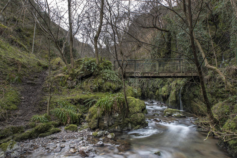 Old Bridge, Alva Glen Scotland. Shot of an old Bridge, Alva Glen Scotland stock image