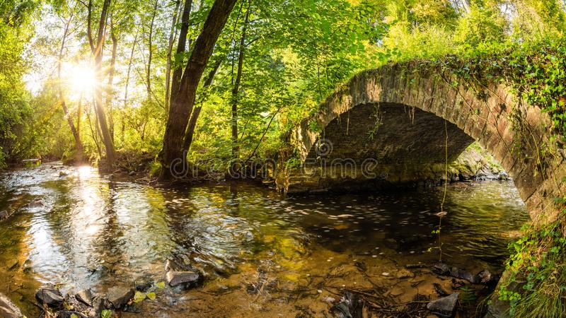 Old bridge over a creek in the forest stock images