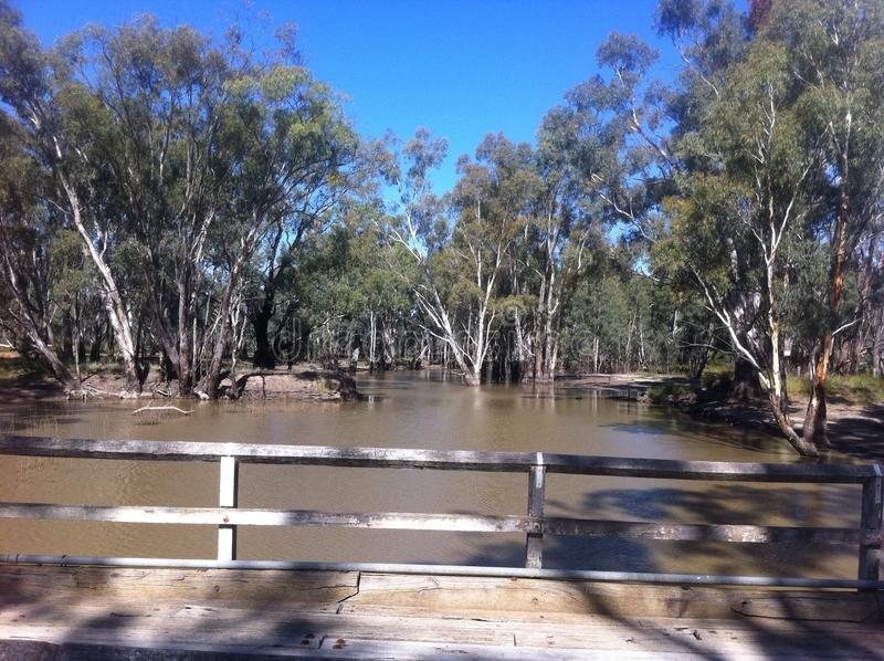 Old bridge over Murray River in Barmah Forest. royalty free stock image