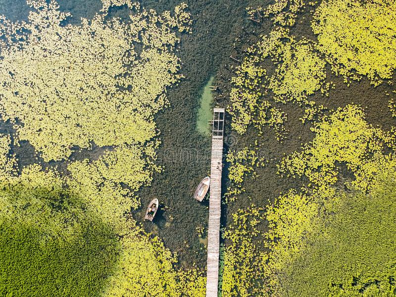 Old broken pier with boat on Plavsko lake between water lilies, Montenegro, Europe.  stock image