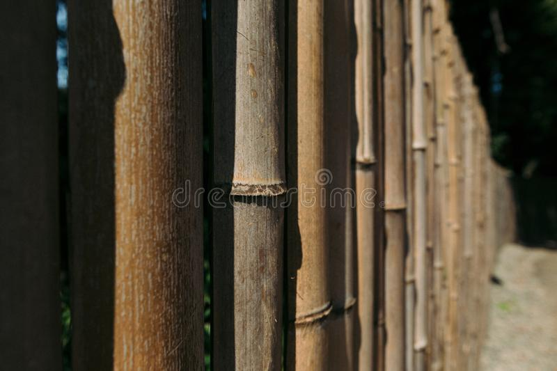 Old brown tone bamboo plank fence royalty free stock photo
