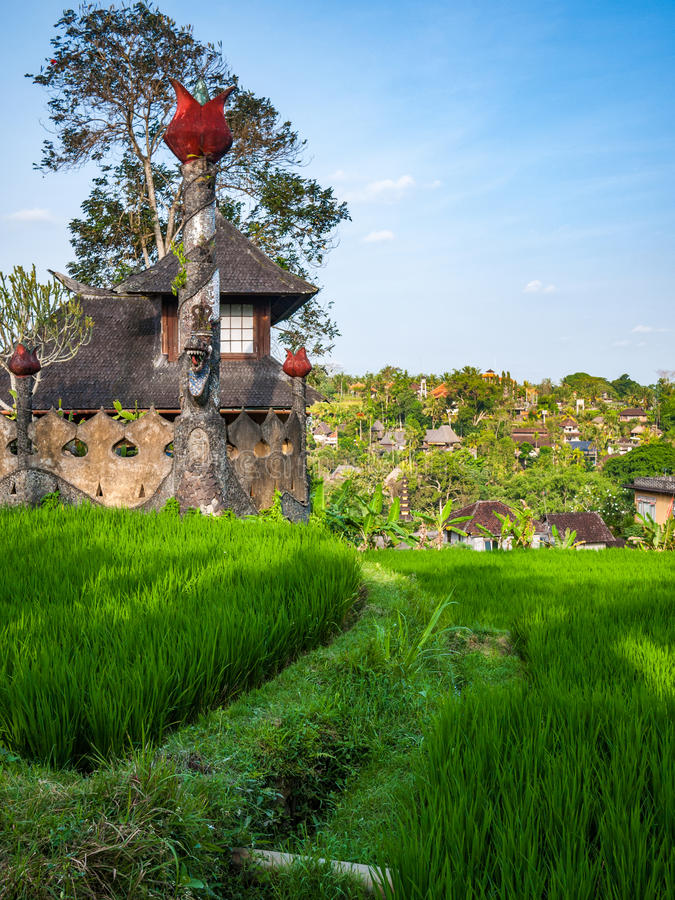 Download Old Building In Indonesian Rice Field Stock Photo - Image: 83716466