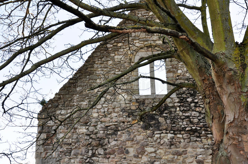 Download Old Building With Tree Stock Photos - Image: 25156753