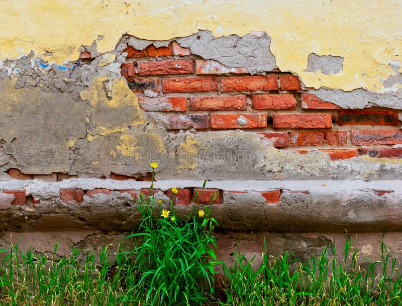 Old building wall with crack in plaster with red bricks inside stock image