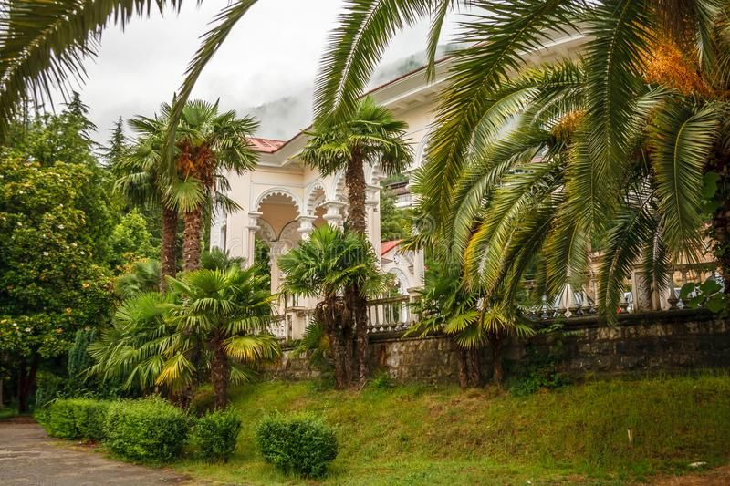 Old buildings in Abkhazia overgrown with grass and greenery.  stock images