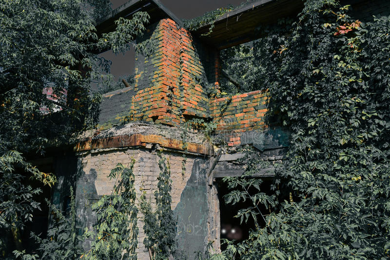 Old burnt house overgrown with plants in the moonlit night. Horror. Eyes in the dark. stock images