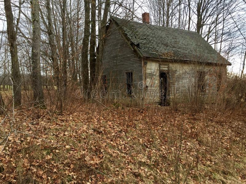Old cabin in the woods in Maine stock photography