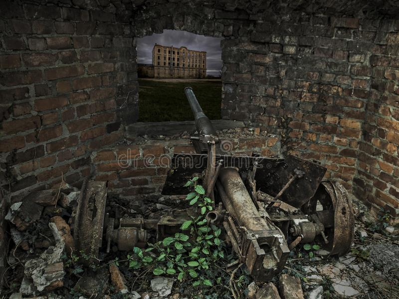 Old Cannon of time great World War in ruins royalty free stock images