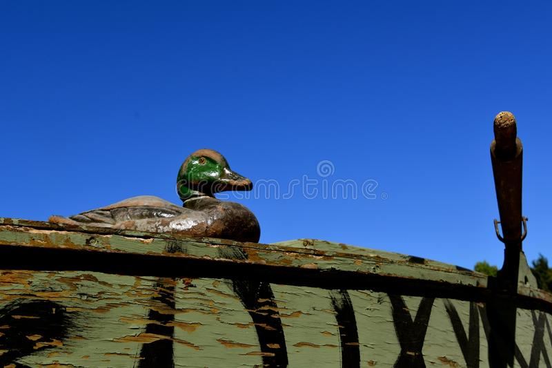Old canvas duck decoys. An old canvas layered duck mallard decoy rests on the lip of a primitive oar propelled duck boat stock photo