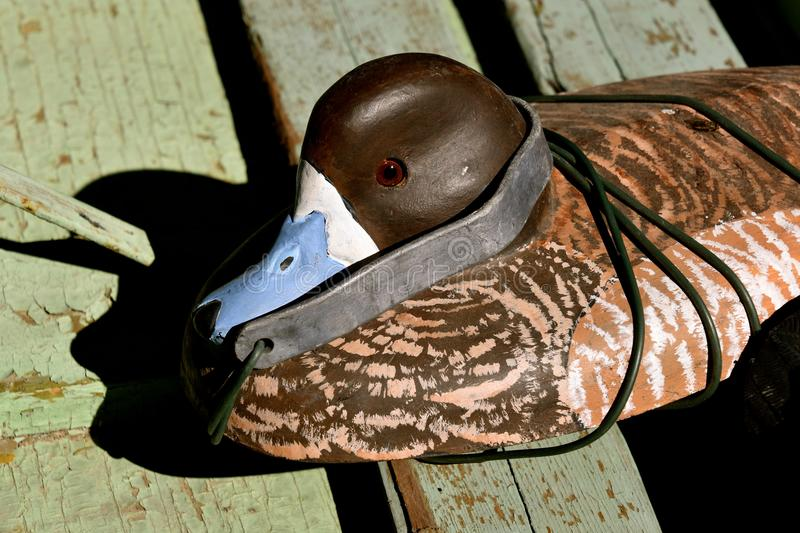 Old canvas duck decoys. An old canvas layered duck mallard decoy rests on the wood floor of a primitive oar propelled duck boat stock photo