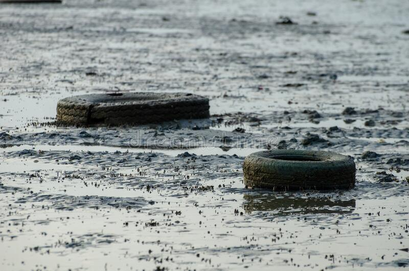 Old car tire at muddy. Old car tire at sea coastal royalty free stock image