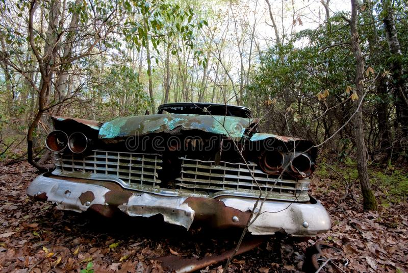 Old car in the woods stock images