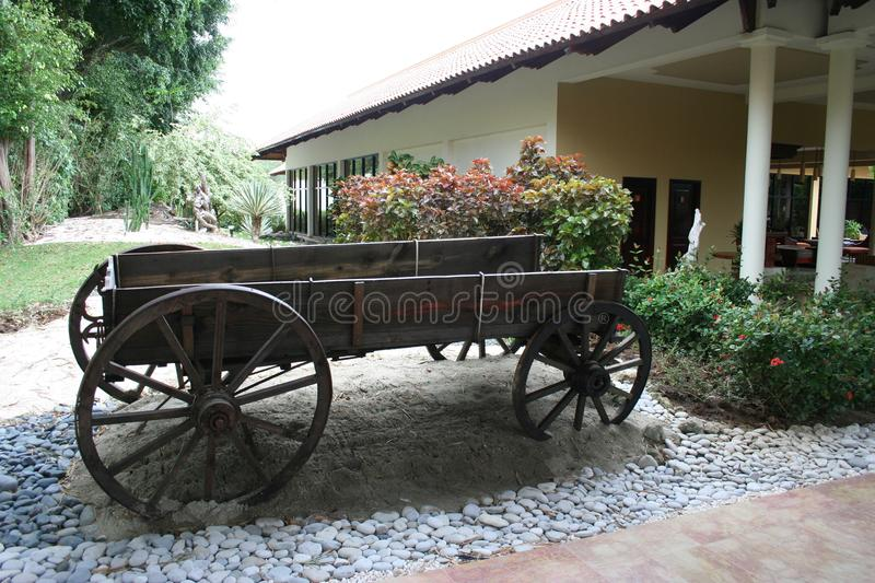 Old cart full of flowers in a beautiful hotel. In the Dominican Republic. Nice and quiet place royalty free stock image